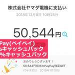 今話題のPayPay(ペイペイ)でipadを買ったら、なんと100%キャッシュバックが当たった!!